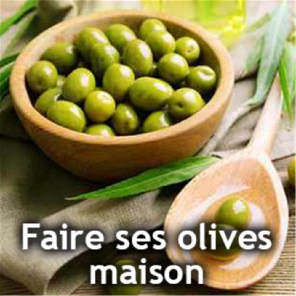 Faire ses olives vertes la maison tom press - Creation a faire a la maison ...