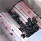 Petit fouloir à raisin et fruits