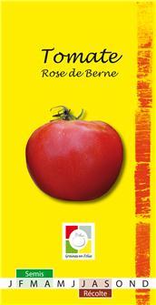 Graines de tomate Berner rose